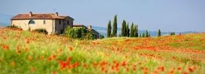 Vakantie in Toscane, billen
