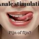 Anale stimulatie