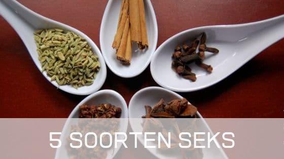5 Soorten seks